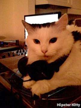 DJ Kitty 2