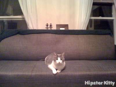 Edward Hopper Cat