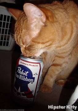 Pazza Loves PBR
