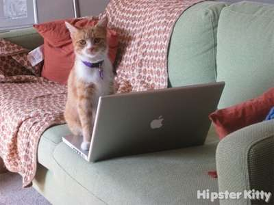 Macbook Hipster Cat