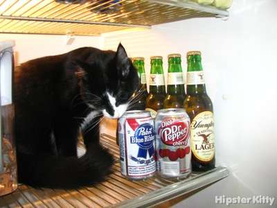 Caturday Night PBR